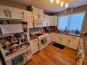 STYLE OF KITCHEN CABINET DOORS